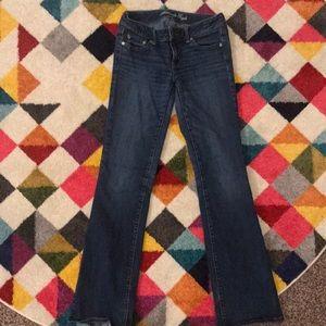 AE bootcut pants